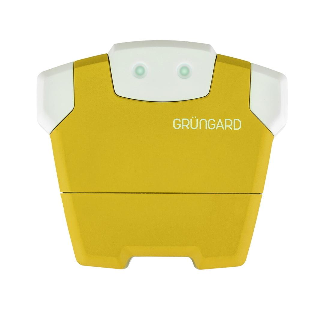 Grungard 4 Region - Automatic garden irrigation assistant